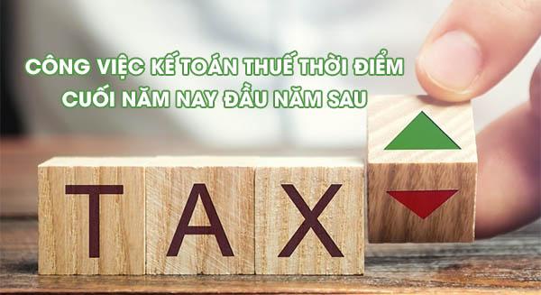 Công việc của kế toán thuế